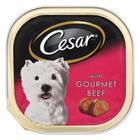 Cesar Dog Food Gourmet Beef 100g