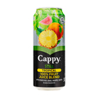 CAPPY FRUIT JUICE TROPICAL 330ML