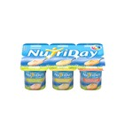 Danone Nutriday Smooth Mix Fruit, Pineapple & Mango Yoghurt 6s