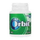 Orbit Gum Spearmint