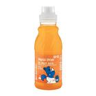 PnP Orange Flavoured Drink 300ml