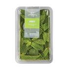PnP Herbs Mint 20g