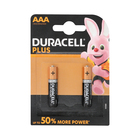 Duracell Batteries Power Plu s AAA 2 2