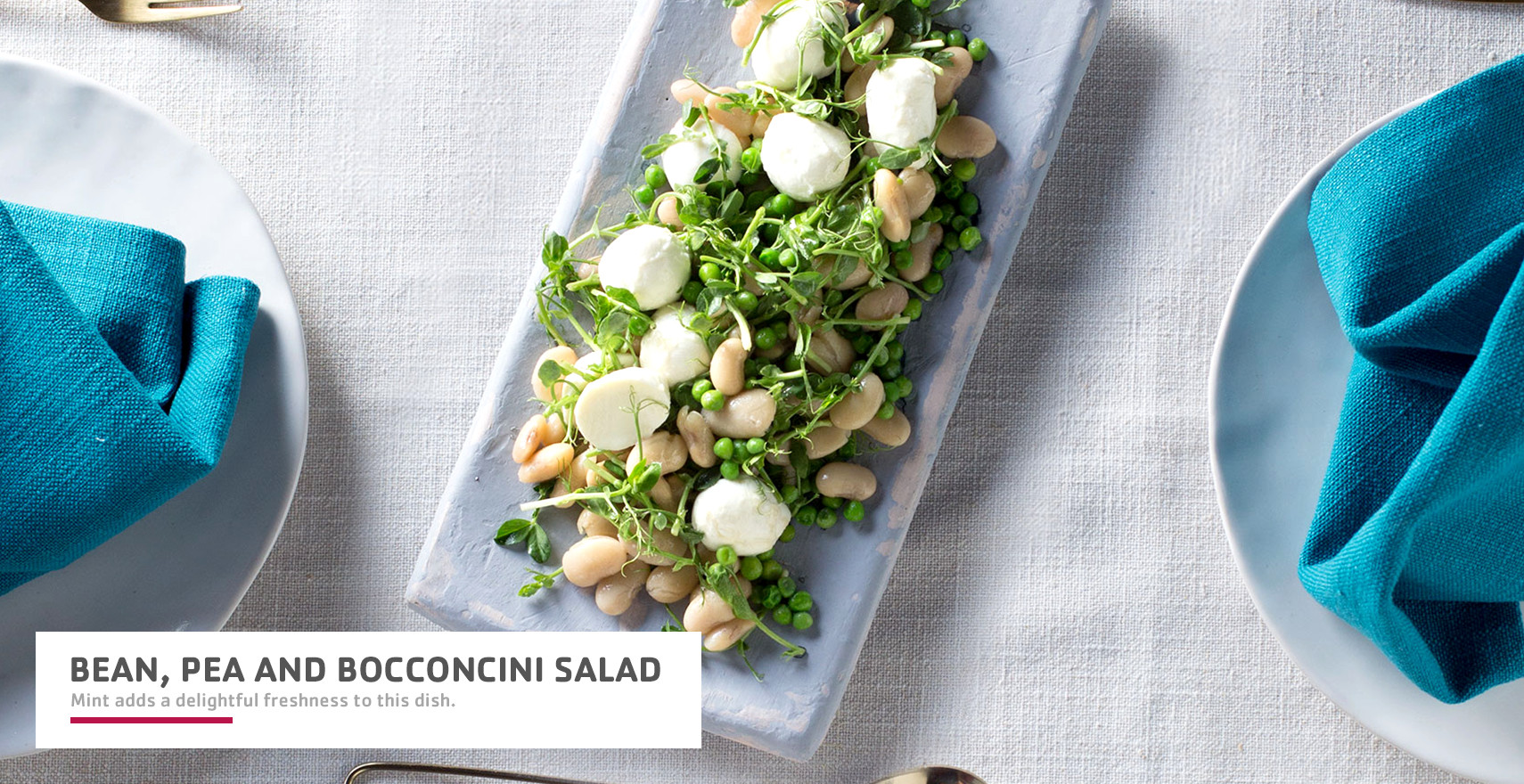 Bean pea and bocconcini salad header image.jpg