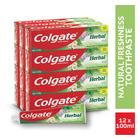 Colgate Herbal Toothpaste 100ml x 12