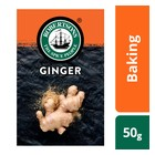 Robertsons Spice Ginger Refill 50g