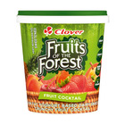 Clover Fruits of the Forest Fruit Cocktail Dairy Snack 1kg