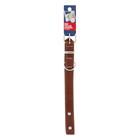 PnP Dog Collar 25x650mm