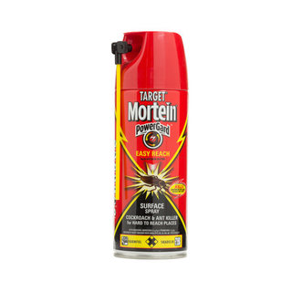 Target Mortein Easy Reach Spray 300ml