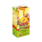 Liqui-Fruit Juice Tropical 2l