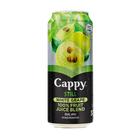 CAPPY FRUIT JUICE WHITE GRAPE 330ML
