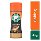 Robertsons Cinnamon Spice 42g bottle