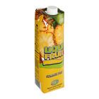 Liqui-Fruit Summer Pine Fruit Juice 1l x 12