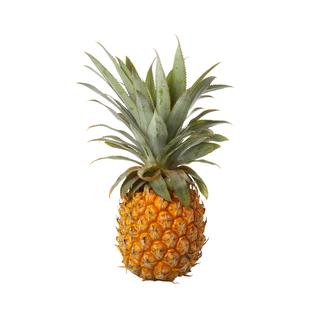 PnP Queen Pineapple