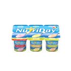 Danone Nutriday Smooth Strawberry, Mixed Fruit & Banana Yoghurt 100g x 6