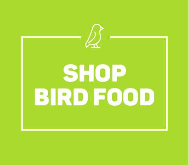 Pets-Landing-Page-Bird-Food.jpg