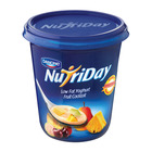 Danone Nutriday Low Fat Fruit Cocktail Yoghurt 1kg