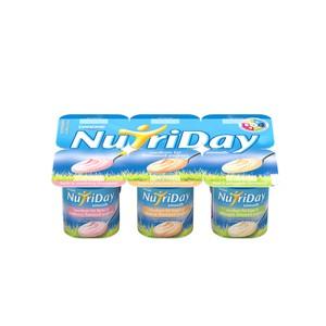 Danone Nutriday Smooth Tropical Fruit Yoghurt 6s