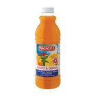 Magalies Nectar Mango Orange 1 Litre