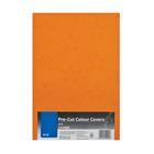 PnP A4 Pre Cut Colour Covers 10pc