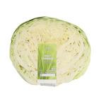 PnP Cabbage Half