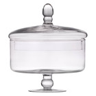 Real Home Biscuit Bowl Glass 20cm