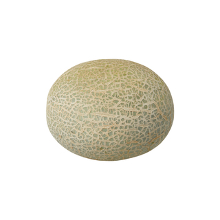 Spanspek Melon